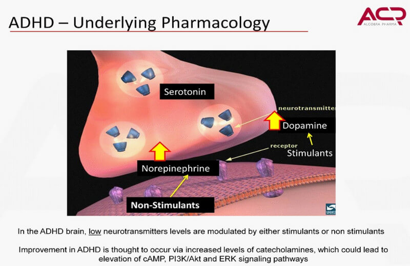 adhd pharmacology